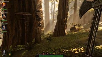Warhammer: Vermintide 2 - The Tempest -pelikuvaa