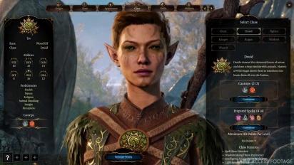 Baldur's Gate III - Nature's Power: The Druids