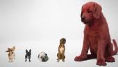 Ensivilkaisu - Clifford The Big Red Dog