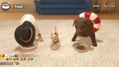 Little Friends: Dogs & Cats - julkistustraileri