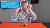 Nopea katsaus - Sennheiser Momentum True Wireless