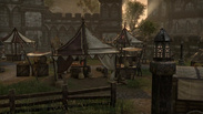 The Elder Scrolls Online - Gathering and Exploration Trailer